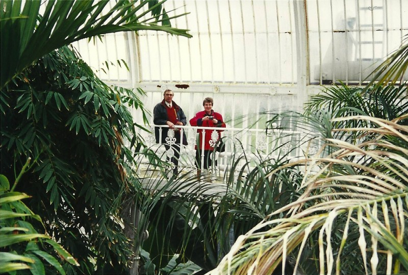in the Palm House