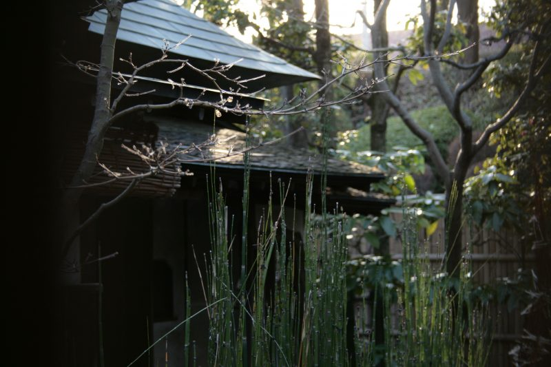tea house, out of hours